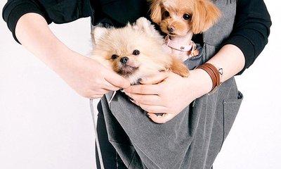 무겁지만 괜찮아 사랑이야♥ 강아지 외출용품 여기 다있어요!