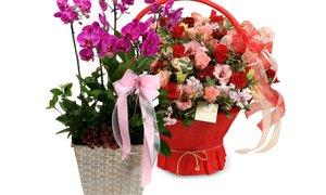 꽃배달 전문샵