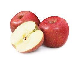 과일은 역시 제철