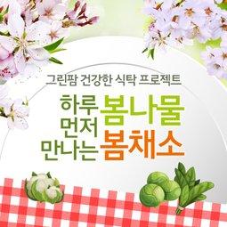 건강식탁 그린팜 하루 먼저 만나는 봄나물/봄채소