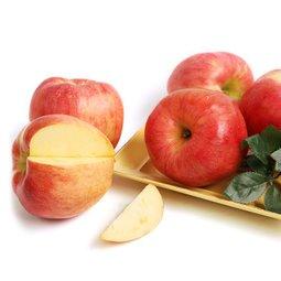 하루한알 맛좋은 햇사과 신선하고 맛있는 햇사과를 특별가로