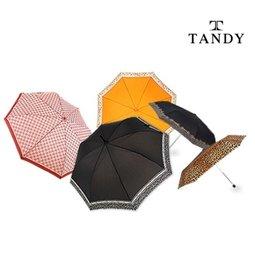 탠디 품격있는우산 Tandy