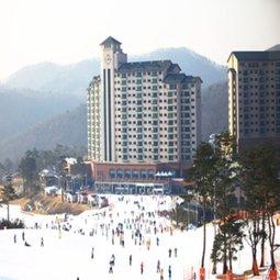 국내 스키장 겨울시즌 OPEN 시즌권부터 숙박 렌탈권까지 다양!
