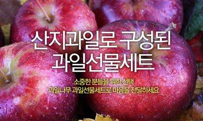 설명절 과일선물세트 소중한분게 전하세요!