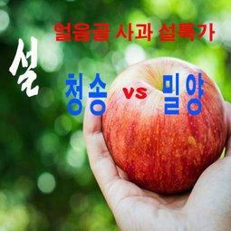 얼음골 사과 청송 vs 밀양 꿀이 가득한 사과 우리집 디저트1호