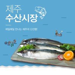 매일 만나는 바다의 신선함 맛있는 생선반찬~ 제주 수산시장