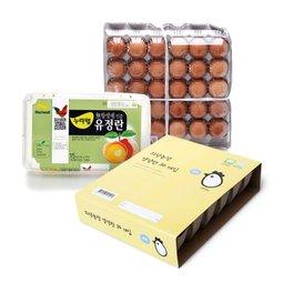 품질도 배송도 역시 이마트 계란 여기서 쓱-