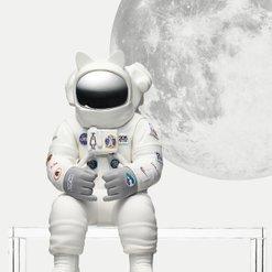 Fly 2 the (moon) howdy x coolrain 온라인 판매 시작