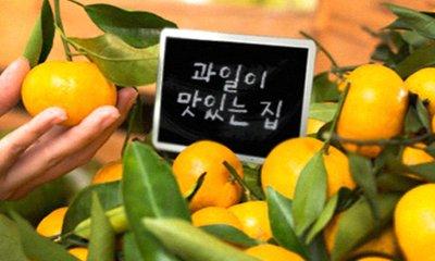 여기가 소문나게 맛있는 과일맛집 과일연가 장보기