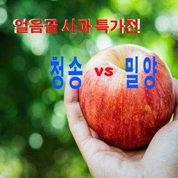 얼음골사과특가전 청송 vs 밀양 아삭아삭한  사과을 느끼세요