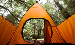 자가 치유 텐트