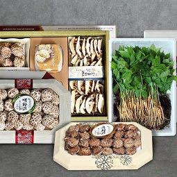농부마음 한가위 `추석농특산세트 버섯/새싹삼