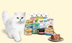 팬시피스트 고양이 습식사료 모음전