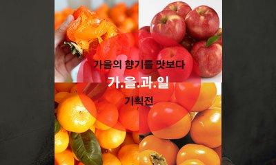 가을의 色 가을에 꼭~ 챙겨먹어야 할 제철과일