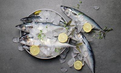 팸쿡 수산시장 OPEN 생선부터 해산물까지 맛있는신선함 FAMCOOK