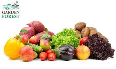 신선한 야채 채소 감자 고구마 사과 특가 모음전