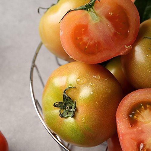 [대용량 과일 특가] 제철과일/수입과일