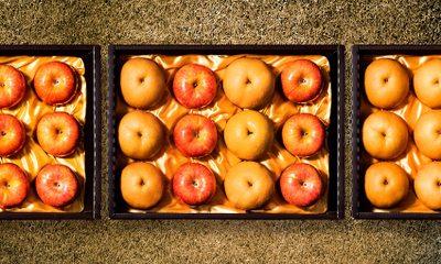 과일 선물세트 사과배선물세트