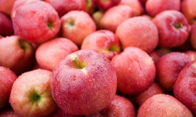 애플팩토리 세척사과 언제나 맛있는 비타민