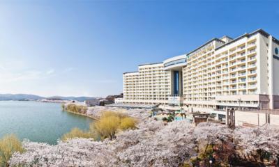 벚꽃명소 주변 호텔/리조트 일년에 딱 한번 꽃구경은 가야죠!