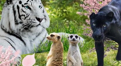 우리아이 좋아하는 동물원