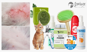 울지마마이펫 강아지 고양이 펫스킨케어 브랜드
