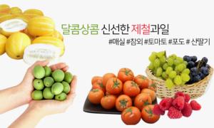 달콤상콤한 제철과일 매실/참외/토마토/사과