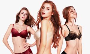 [비너스 비비안]브랜드 퀄리트 속옷 종합전