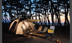 신세계 캠핑용품 특가전
