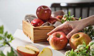 농식품 창업제품 전용관 7월 기획전