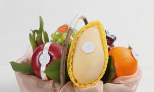 맛다름 프리미엄 과일바구니&박스선물세트