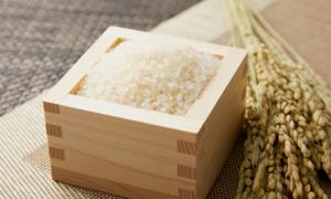 쌀벌레 완벽차단 소량 진공포장 쌀 할인 이벤트까지!