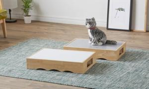 마이펫츠 반려동물 가구전 하우스/식기/캣타워/스크래쳐 실용성&디자인& 인테리어 효과
