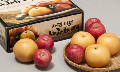 사과/배 선물세트 산지출고