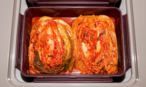 [딤채] 김치냉장고 기획전