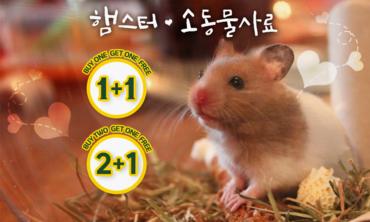 햄스터 및 소동물사료 알뜰쇼핑 1+1,2+1 기획할인