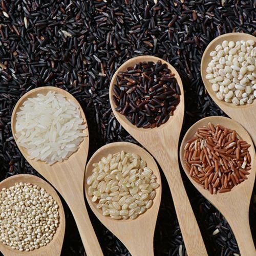 건강한 한 끼의 시작! 쌀 잡곡 모음전