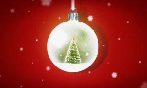 미리 준비하는 크리스마스  연말에도 가족/연인과 함께 행복한 시간 따뜻한 겨울나기