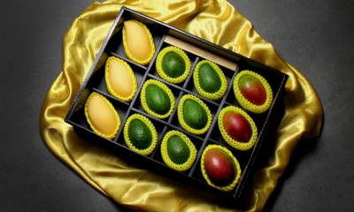 품격있는 GIFT 과일 곶감 선물세트 품위있는 선물 FAMCOOK