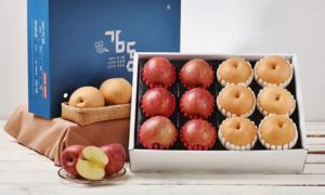 [2020 설] 감동 과일 선물세트 특별전