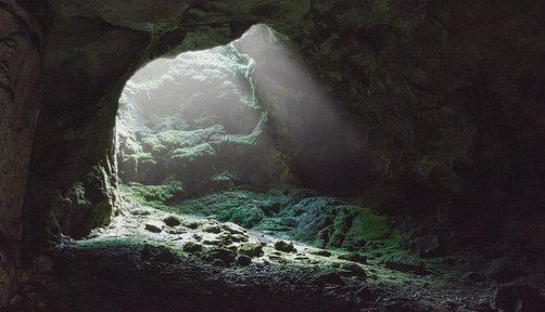 위기 탈출 : 동굴에서 살아남기