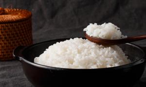 [2020 설맞이] 밥선생 BEST 쌀&잡곡 특가전