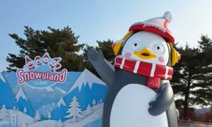 겨울티켓 총집합 스파/스키/눈썰매장 外 특가