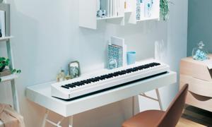 카시오 디지털피아노
