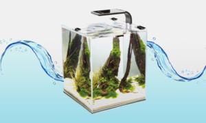 수족관 용품 물생활의 시작 사료/장식/여과기