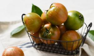금주의 신선특가 과일/채소/축산 양곡까지 한자리