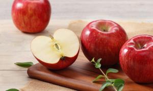 신선함과 맛을 더한 과일모음전