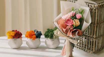 꽃다발/공기정화식물 모음전