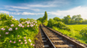 기차국내여행상품 당일여행부터2박3일까지~ 하늘길 막히면 땅의길로 가자!