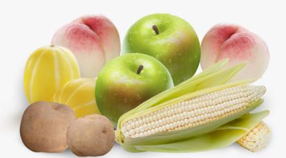 ★신선한 제철과일 채소로 여름나기